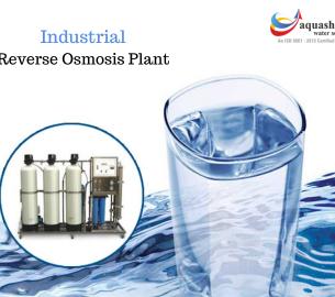 RO-water-plants